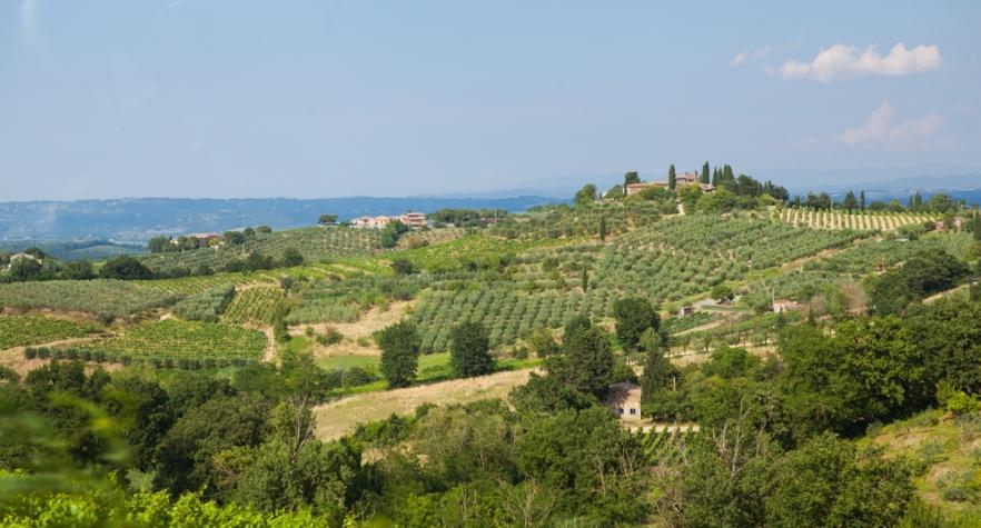 20130705_Toscana-1626
