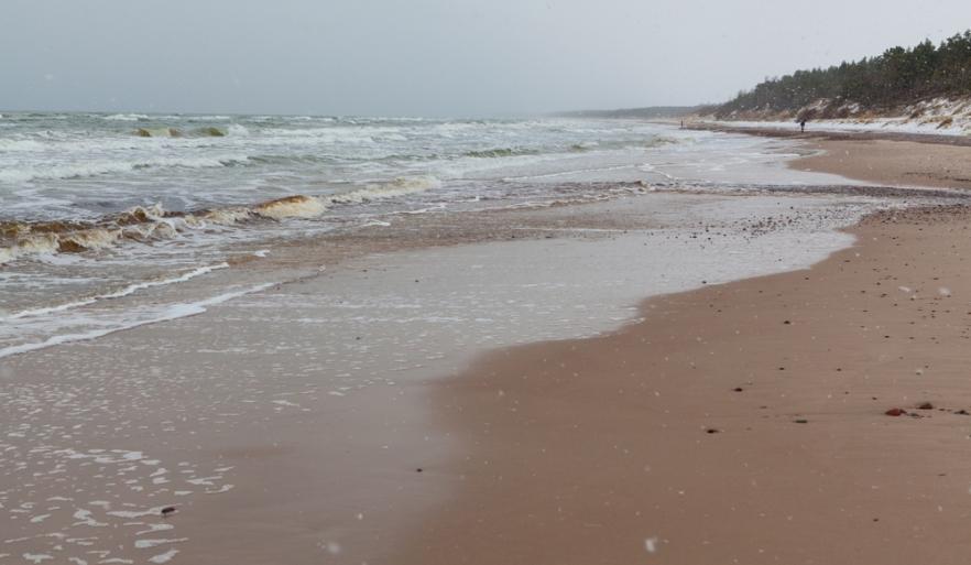 20121203_Latvia_ (1659)