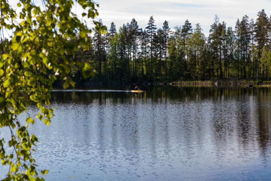 20150620_JuhannusMlz-136