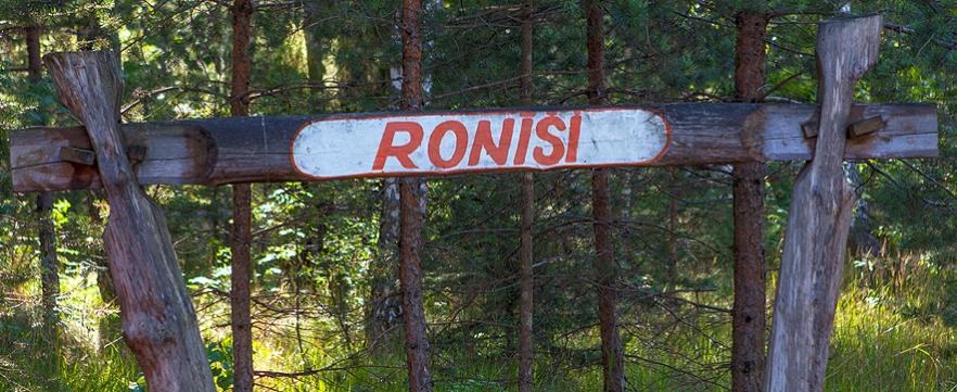 2015_08_14__Ronisi-1009
