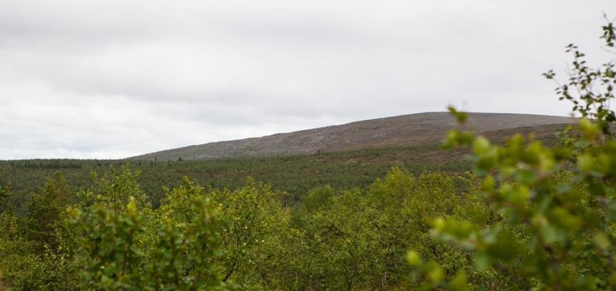 20130723_Karigasniemi-173