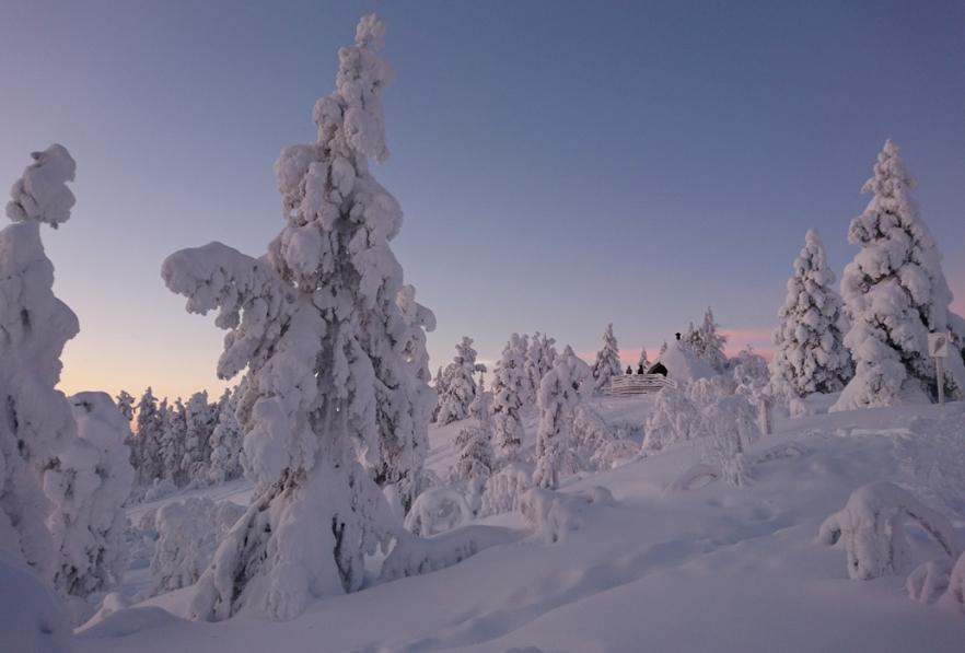 Jyppyrän laavu_AnneKeskitalo-Hotti.jpg